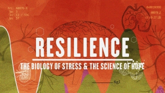 Resilience film pic